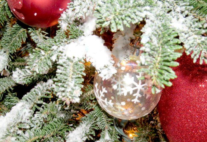 Arbol Navideño Natural con Nieve Artificial Hágalo Usted Mismo