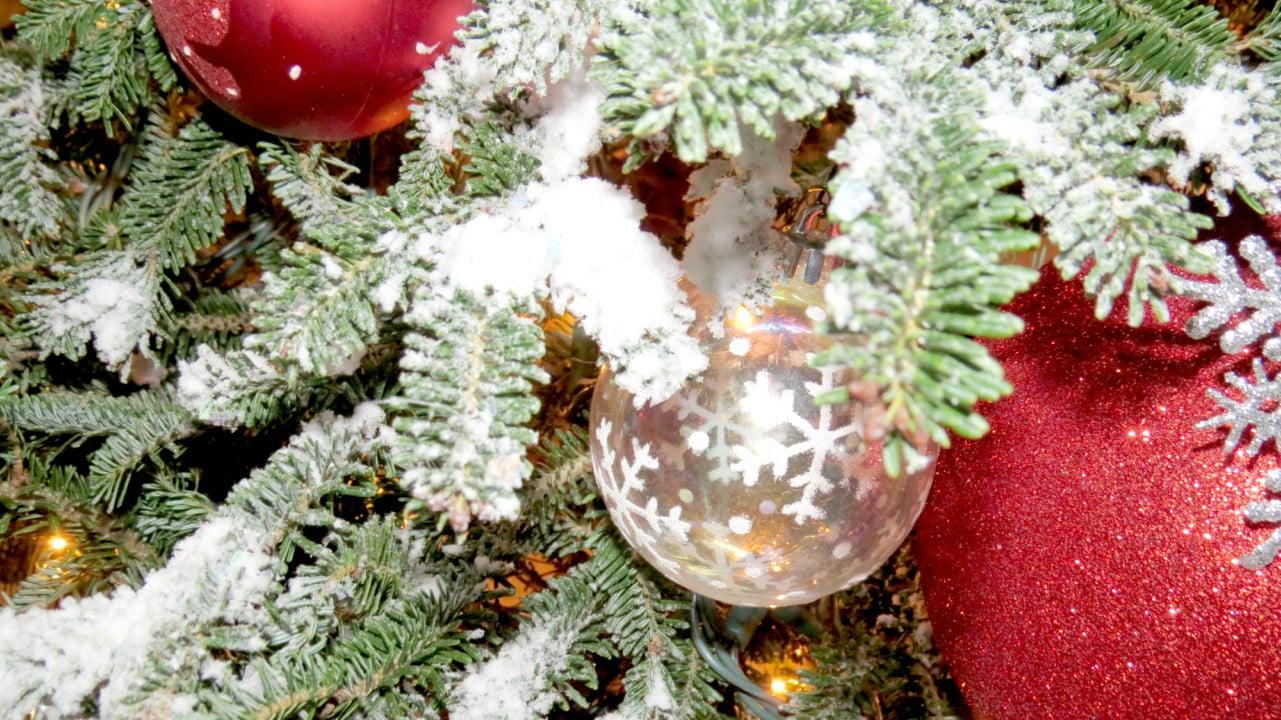 Arbol navide o natural con nieve artificial h galo usted for Como se desarrolla un arbol